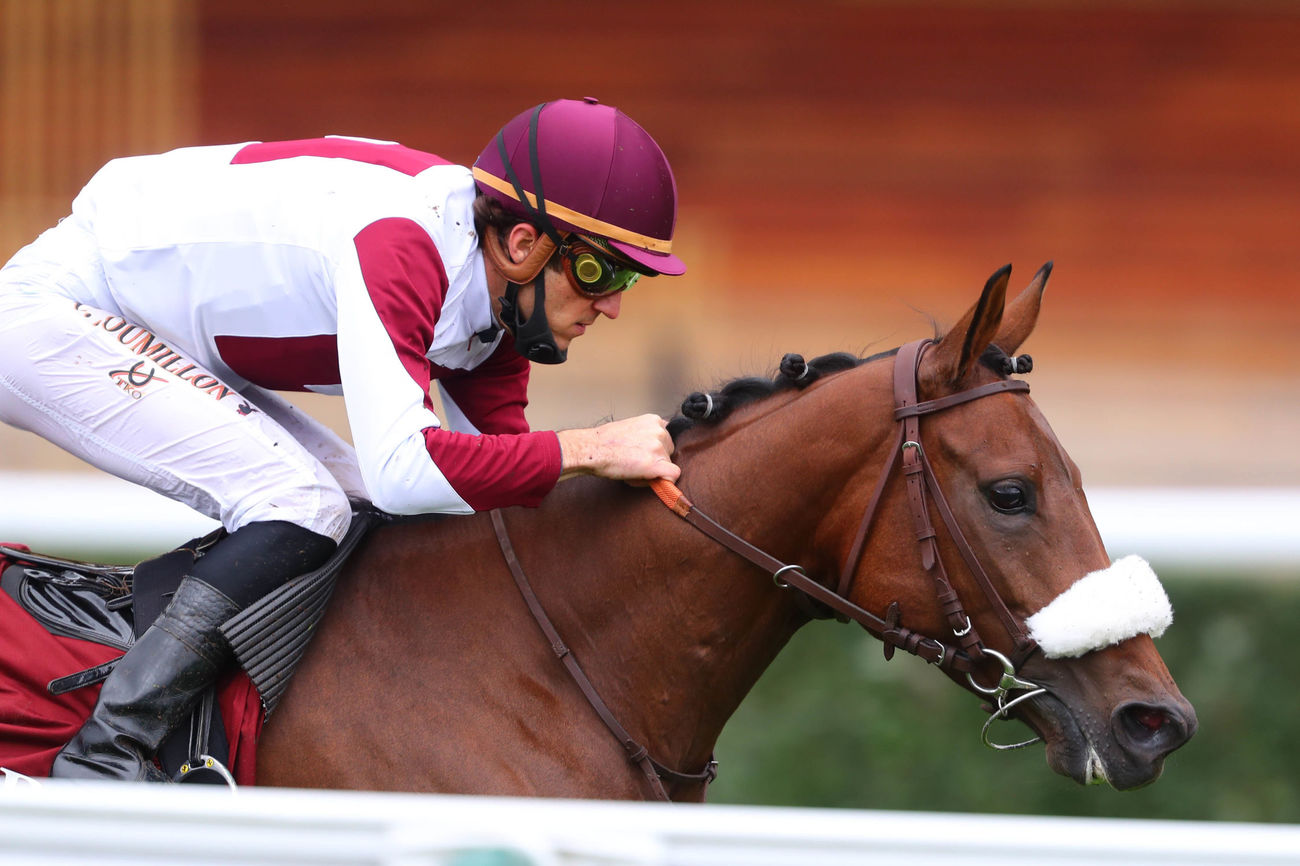 QATAR ARABIAN TROPHY DES JUMENTS - POULICHES 4ANS: LADY PRINCESS: A FILLY THAT RISES TO EVERY OCCASION