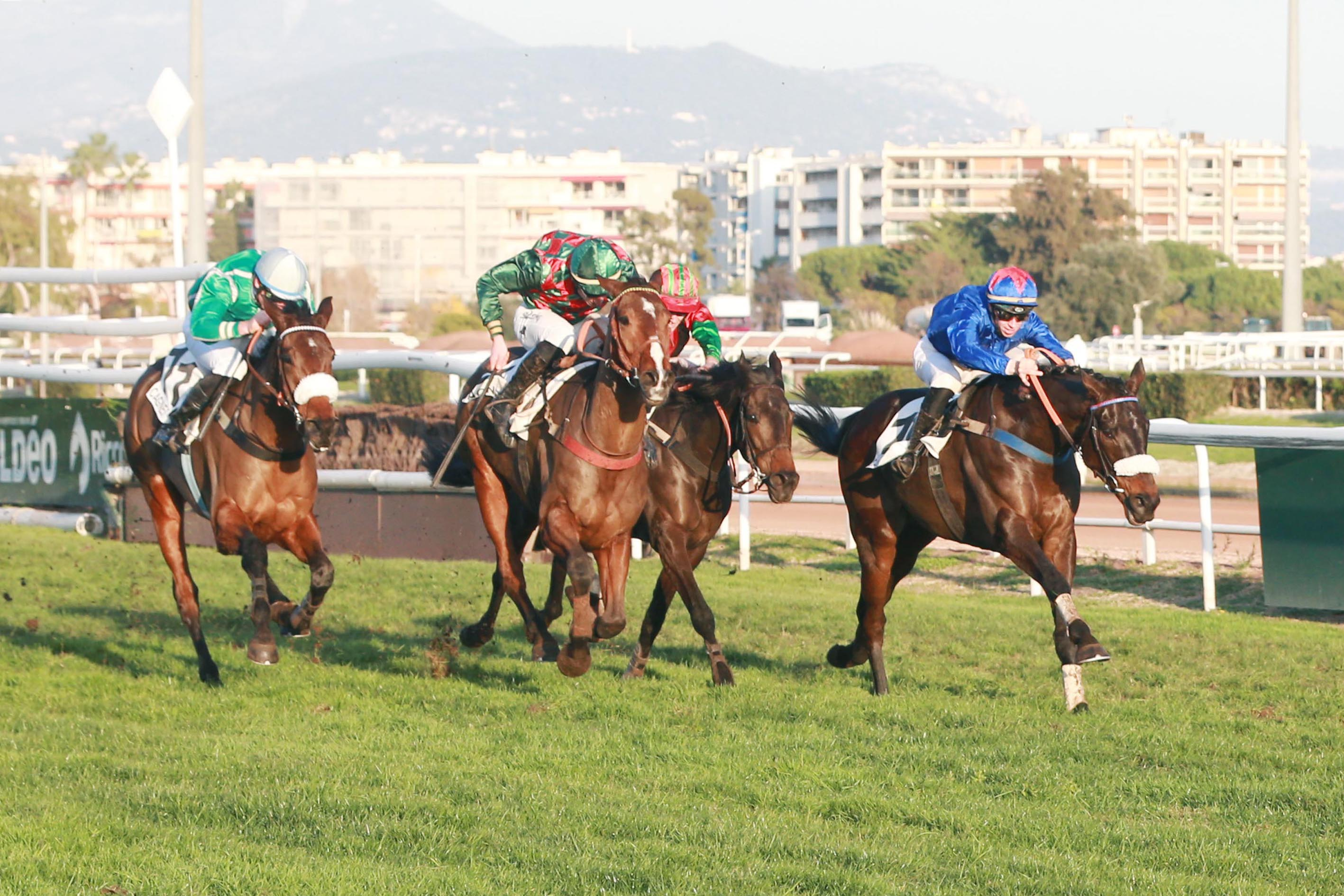 PRIX DOMINGO PEREA (HAIES) - The Golden Boy rentre et gagne