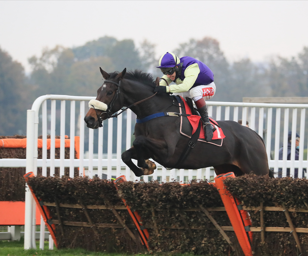 Ballymore Leamington Novices' Hurdle (Gr2) : Adrimel, seul contre tous