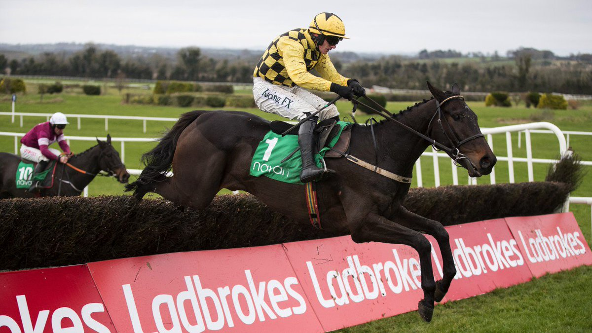 IRISH GOLD CUP (Gr1) - Un bon test avant la Gold Cup pour Al Boum Photo