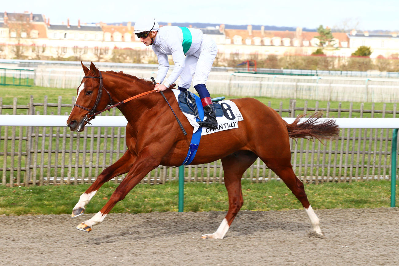 Another Sky ** vers le Prix de Guiche