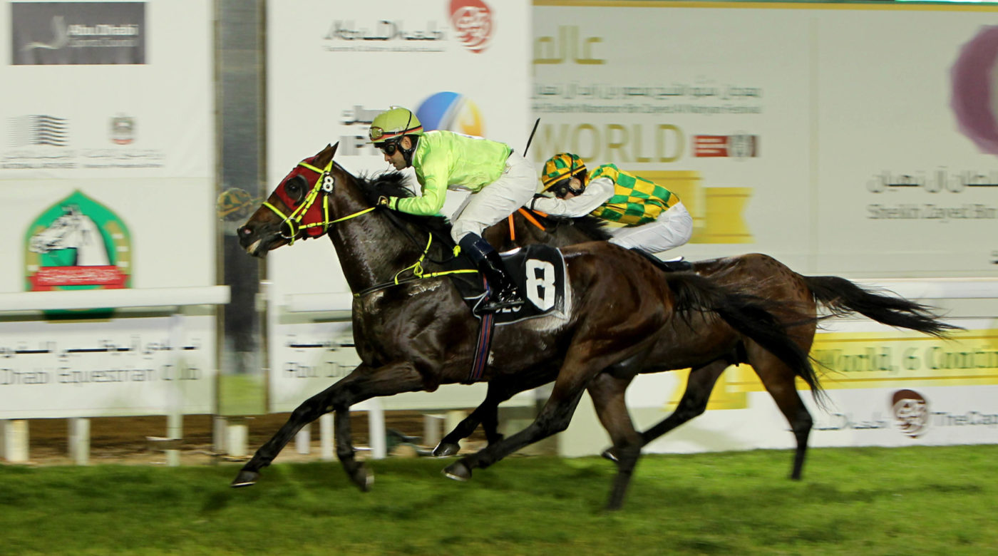 SHEIKH ZAYED BIN SULTAN AL NAHYAN CUP (EX-NATIONAL DAY CUP) - SHARAF AL REEF SIGNS A NICE SUCCESS