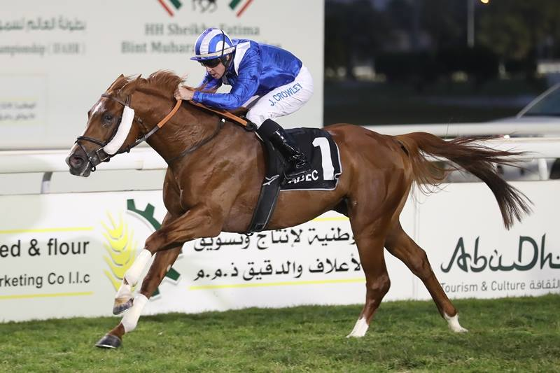 Arabian Triple Crown Round II - SUCCESSFUL STARTS FOR AL ZAHIR IN THE EMIRATES