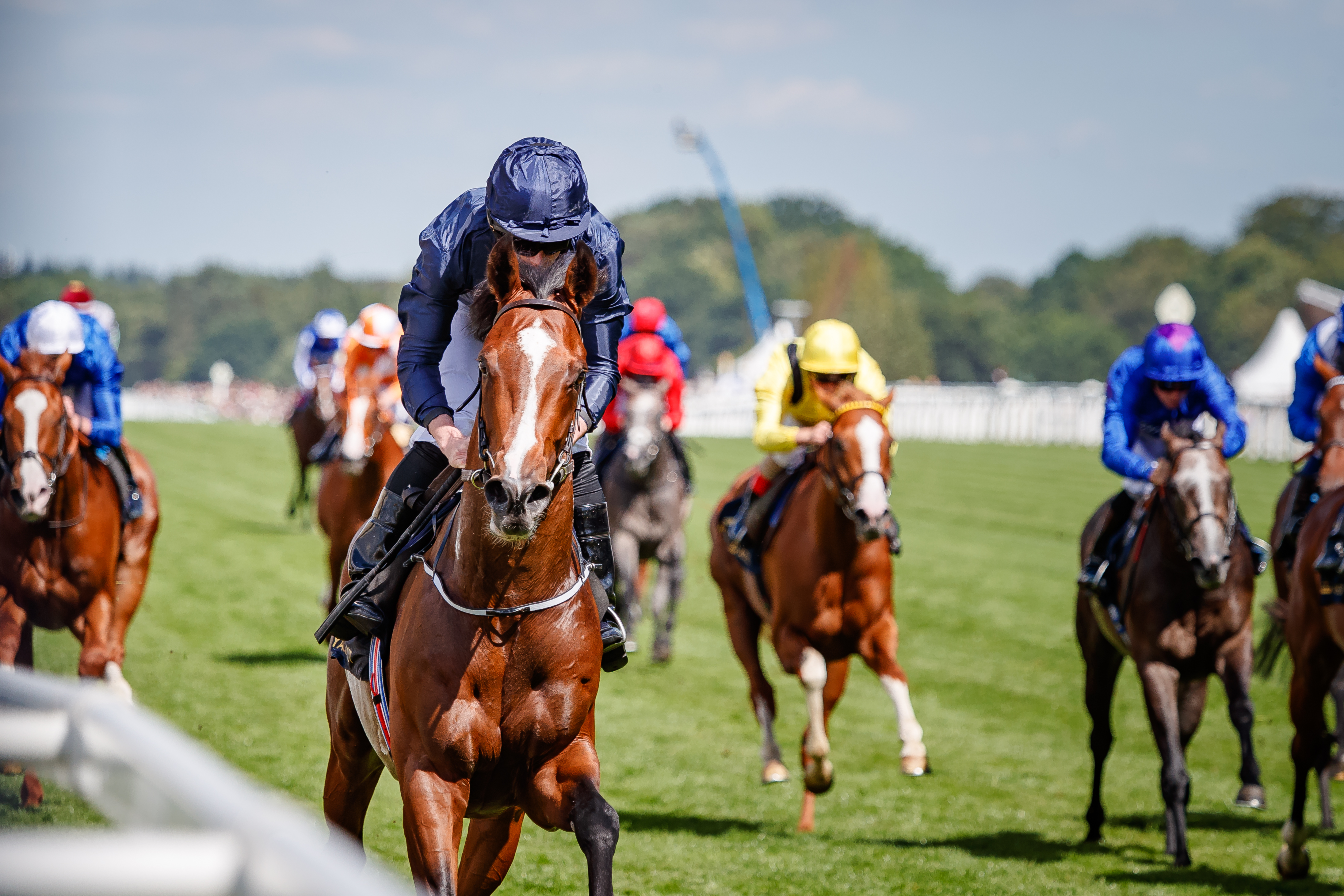 HAMPTON COURT STAKES (GR3) - Le French Derby lui dit merci