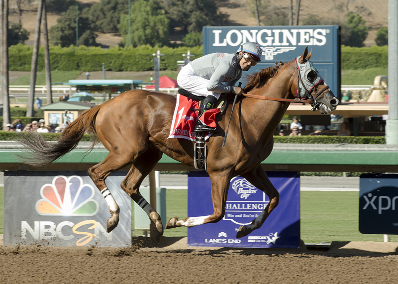 Longines rankings : California Chrome devant A Shin Hikari et Arrogate