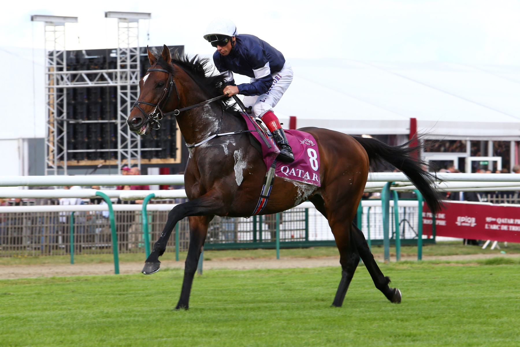 BRITISH CHAMPIONS FILLIES AND MARES STAKES (Gr1) - Seventh Heaven vers un troisième Gr1