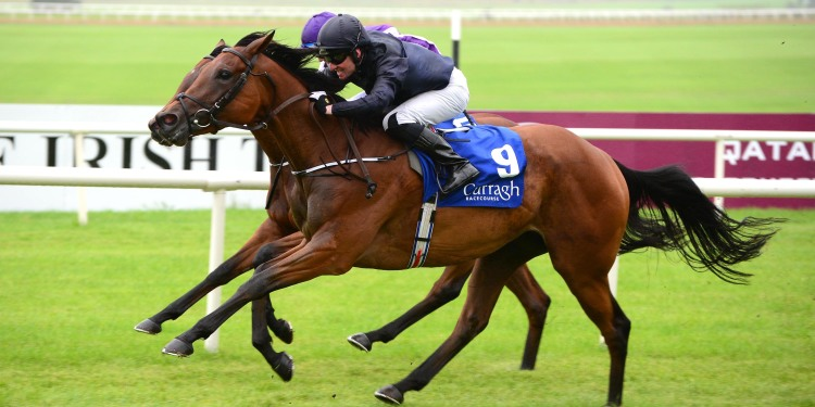 THE FILLIES' MILE (Gr1) - Aidan O'Brien à quatre victoires de son record