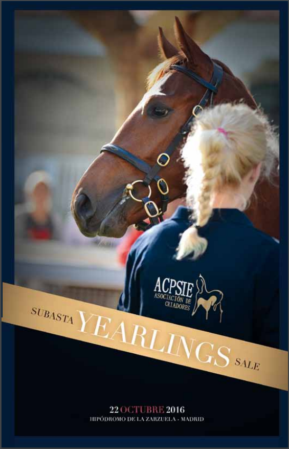 La vente de yearlings de Madrid a lieu ce samedi