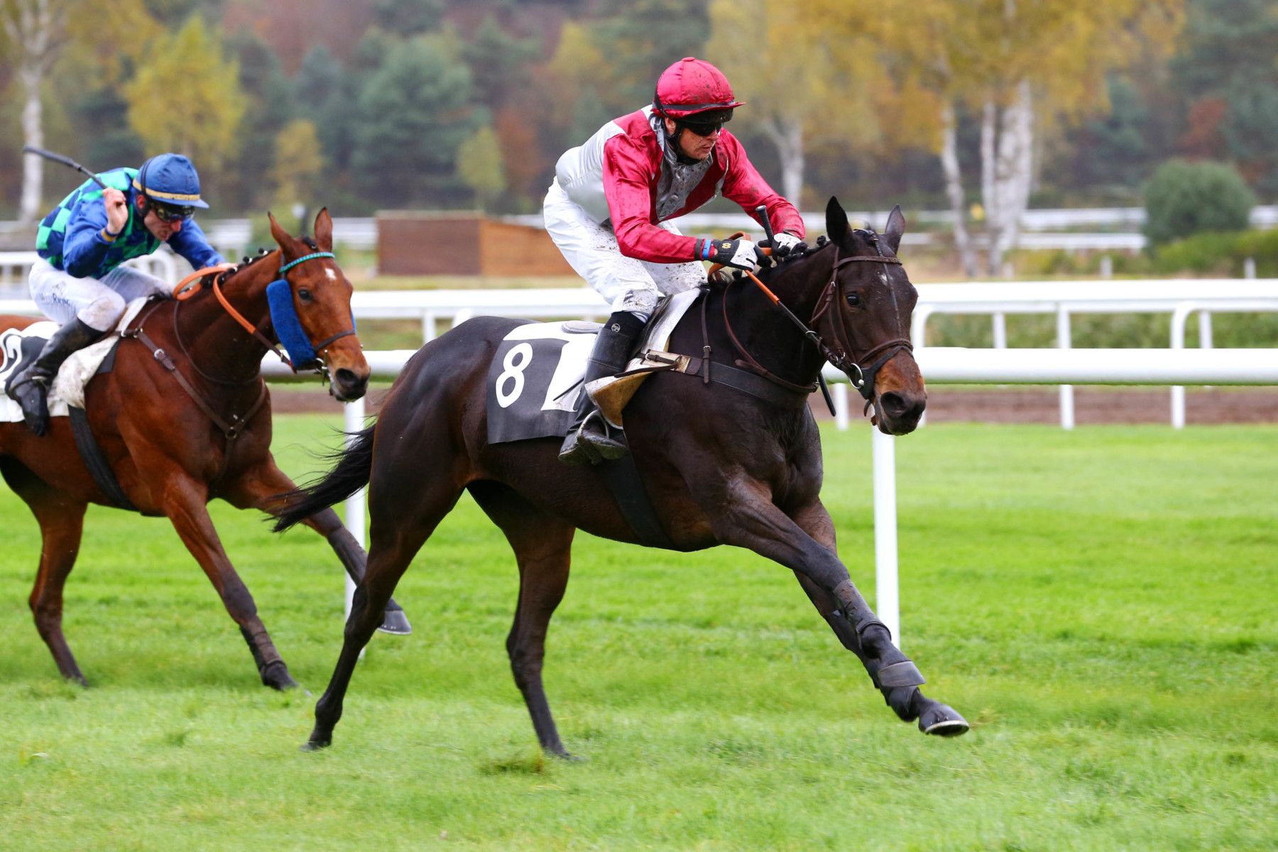 PRIX HENRY MAZE-SENCIER - Angel's Share transforme l'essai en steeple