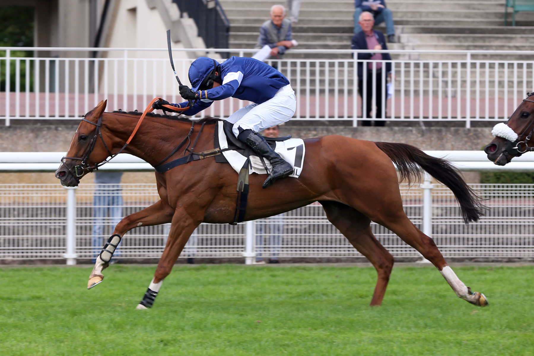 PRIX BERNARD SECLY (L) - Casablanca Mix vs Brishkille : un duel d'AQPS de talent