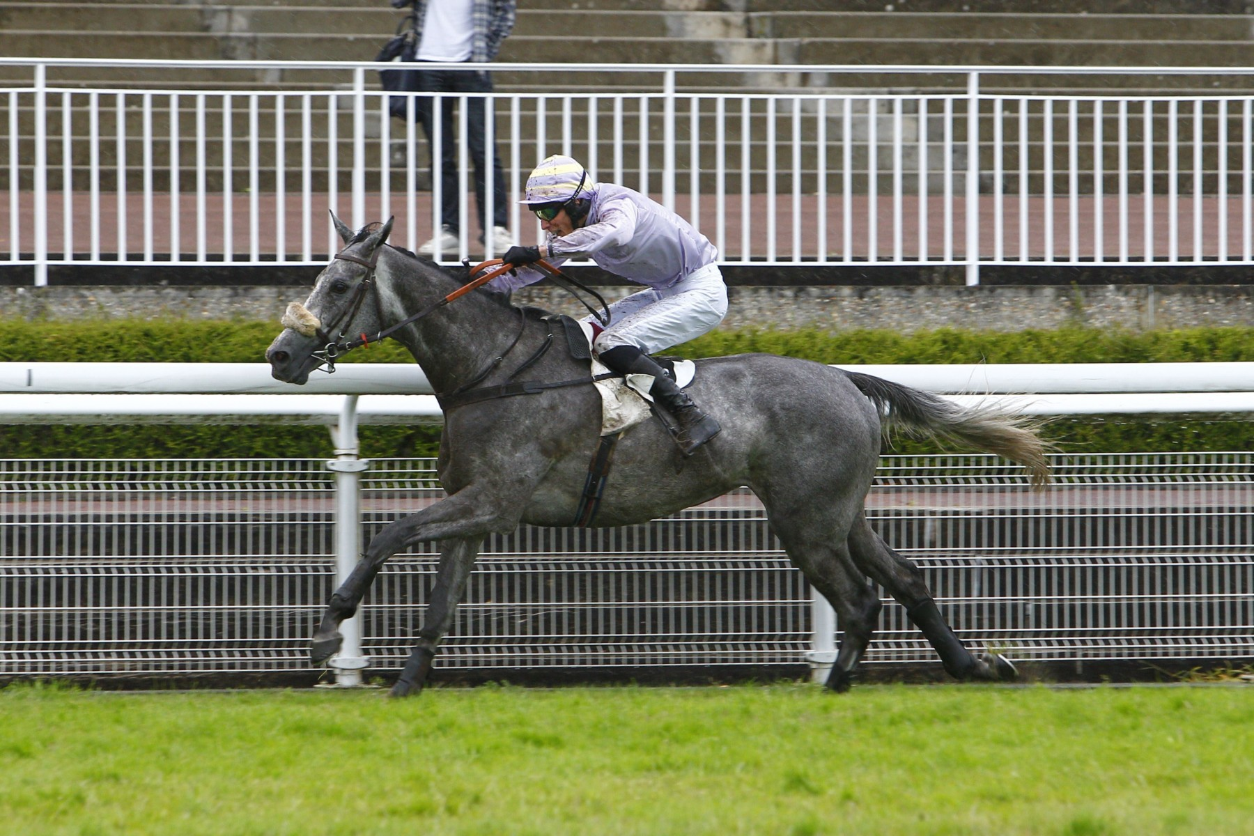 Le french bred Politologue fait impression à Haydock