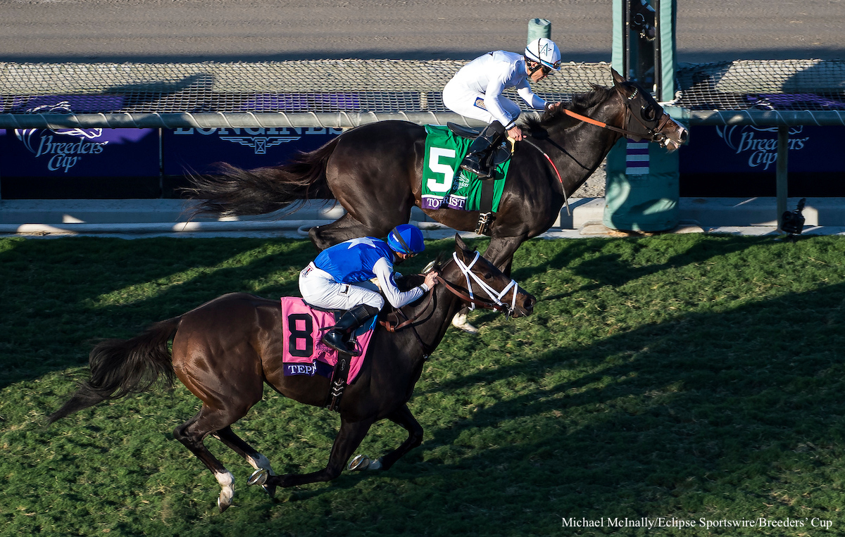 BREEDERS' CUP MILE (GR1) - Tourist prend le chemin le plus court