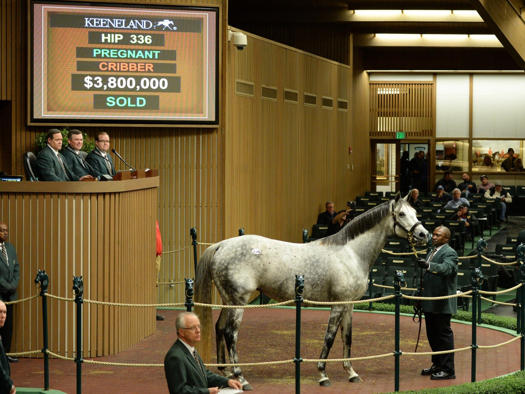 KEENELAND - Un top price à 3.800.000 $ pour Unrivaled Belle