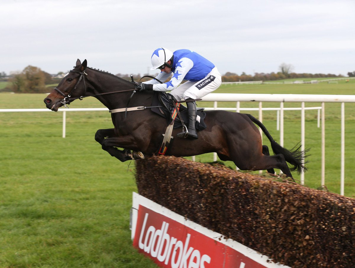 BAR ONE RACING ROYAL BOND NOVICE HURDLE (GR1) - Airlie Beach devance deux French breds
