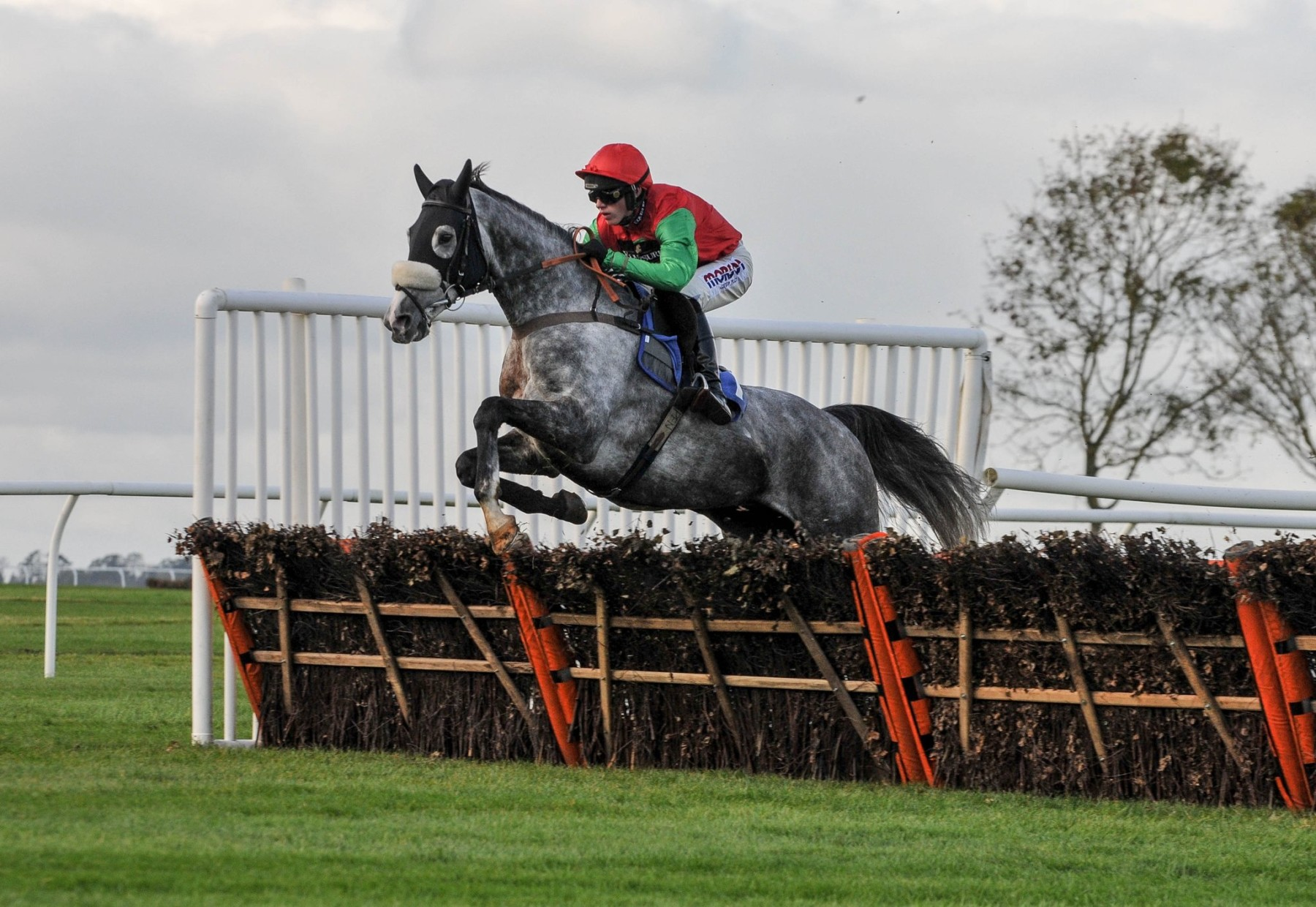 TOLWORTH NOVICES'HURDLE (GR1) - Un Capitaine pour une bataille d'AQPS
