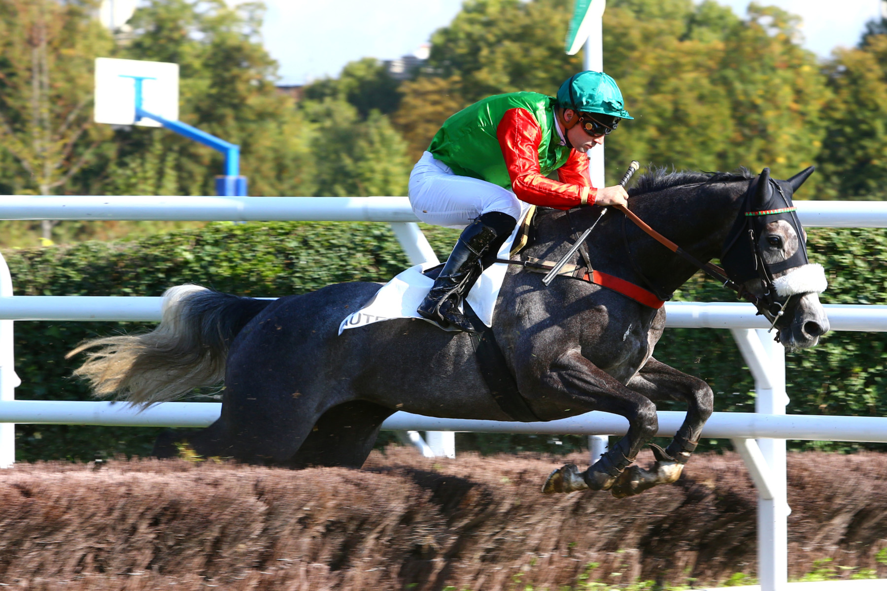 PRIX JEAN BERNADOTTE - Middle poursuit son apprentissage en steeple