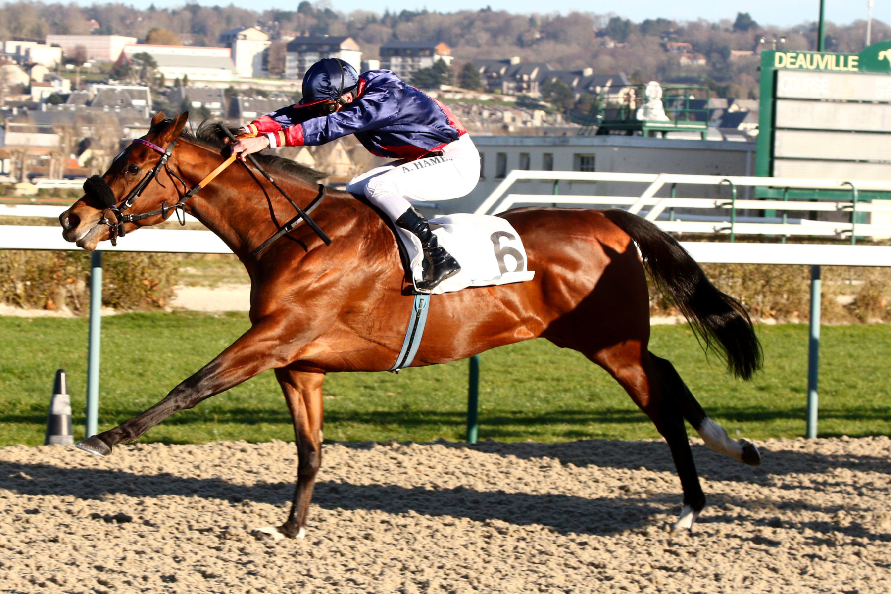 PRIX DU CASTEL (CLASSE 1) - Kick and Rush peut confirmer