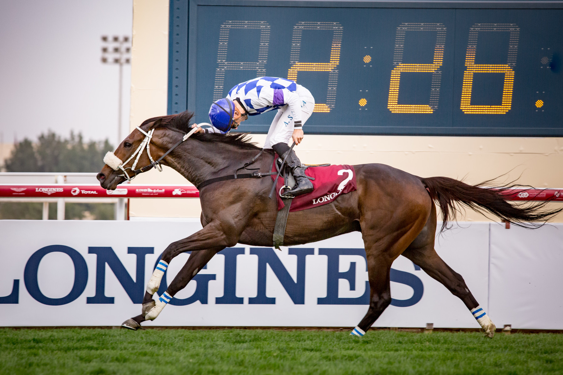 H.H. THE EMIR'S TROPHY (PRESENTED BY LONGINES) (Gr1 local) - Chopin, en route vers Dubaï