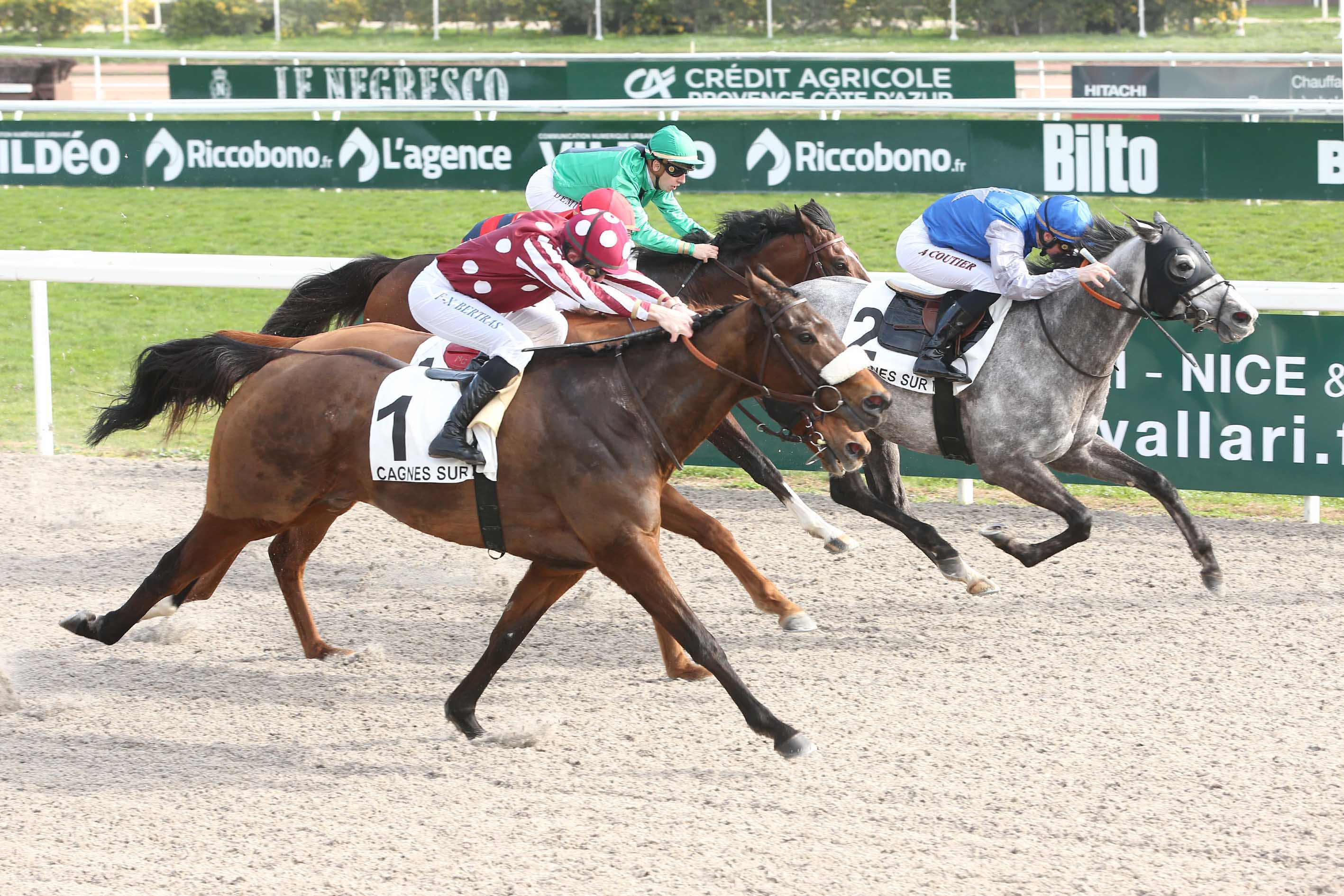 PRIX SKY LAWYER (D) - For Ever fait parler son courage