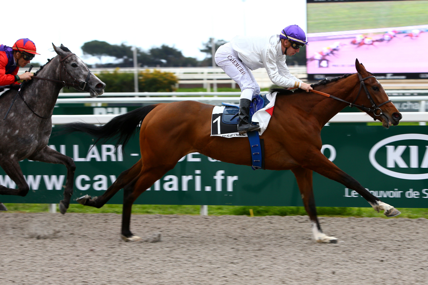 PRIX DE CARRY (MAIDEN) - Mustanga change de tactique