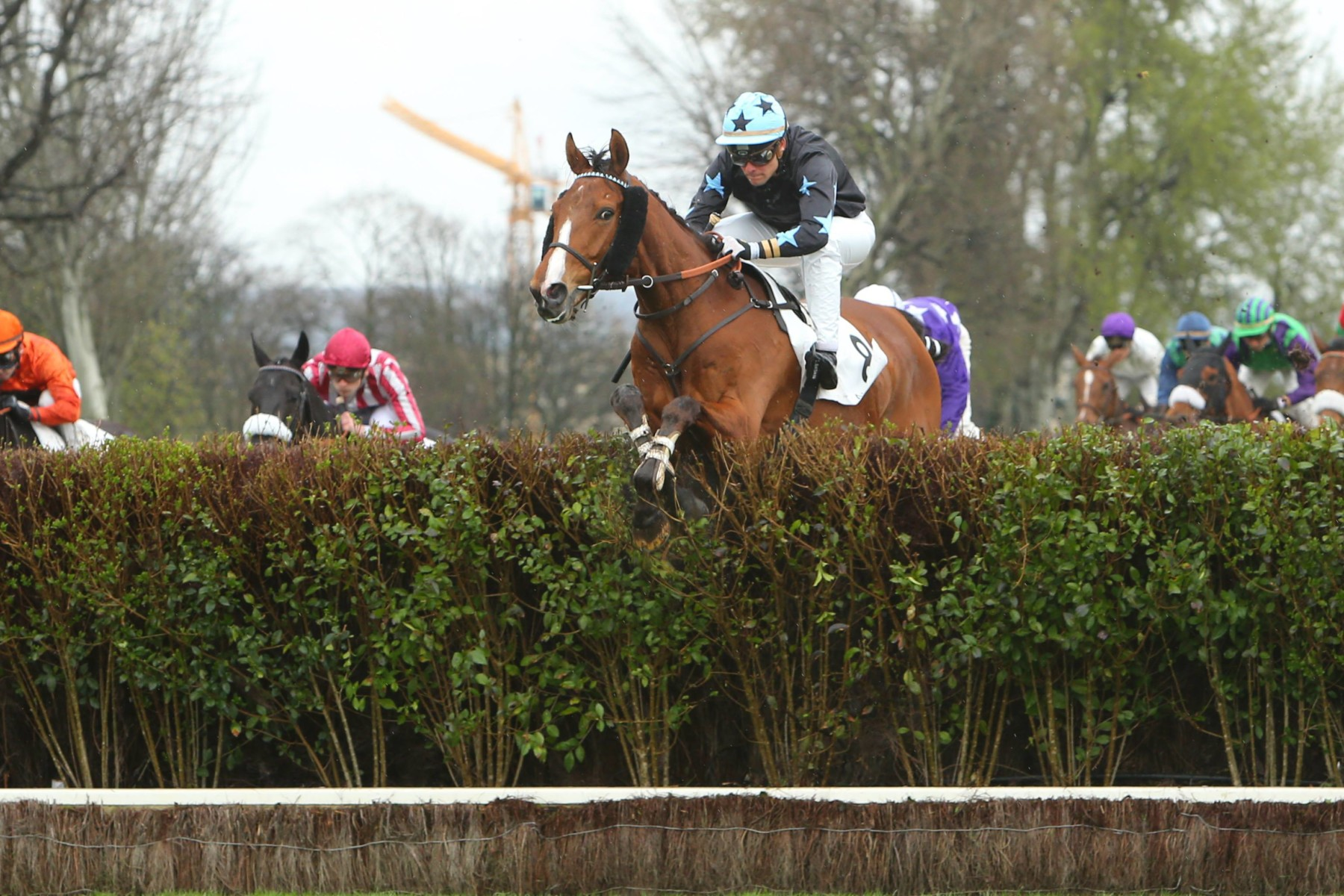 PRIX WILLIAM KNAPP THORN - Monsamou tente sa chance sur le steeple