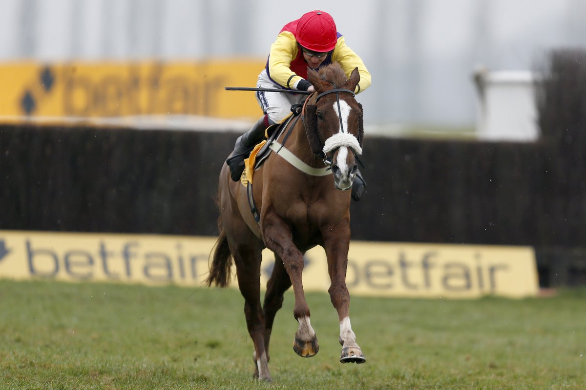 DENMAN CHASE (Gr2) - Native River, le troisième as de Colin Tizzard