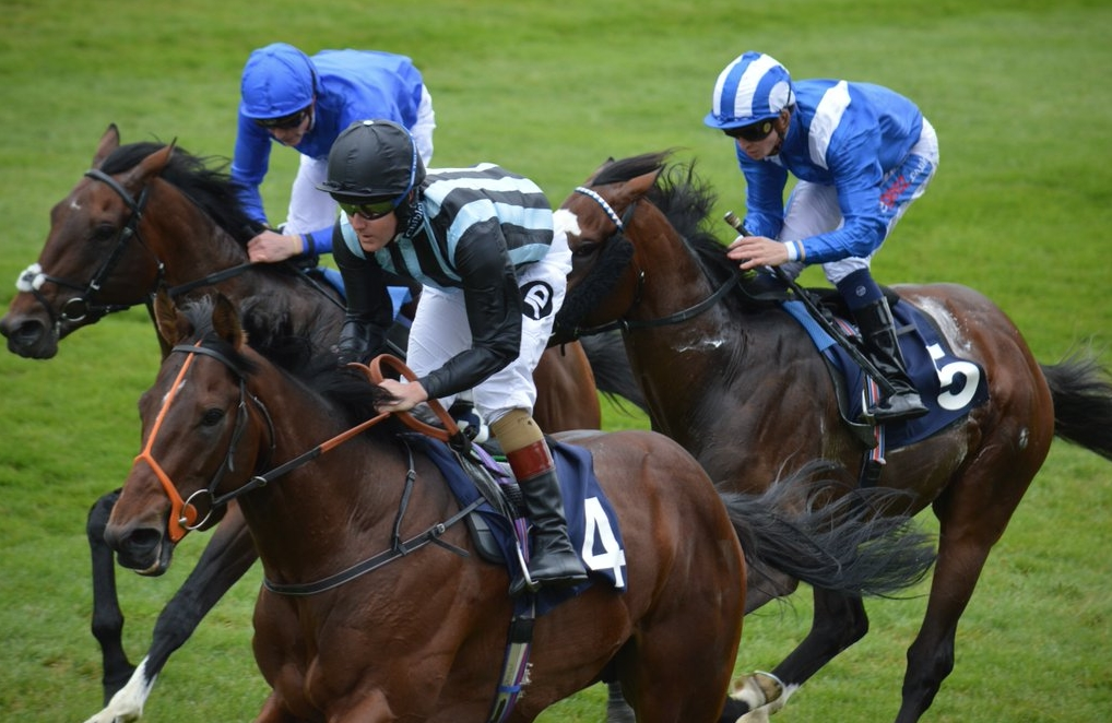 EARL OF SEFTON STAKES (GR3) - Steel of Madrid arrache son Groupe