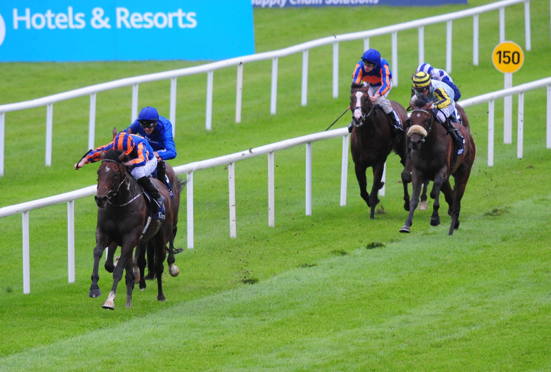 ST JAMES'S PALACE STAKES (GR1) - Churchill dans les traces de Gleneagles