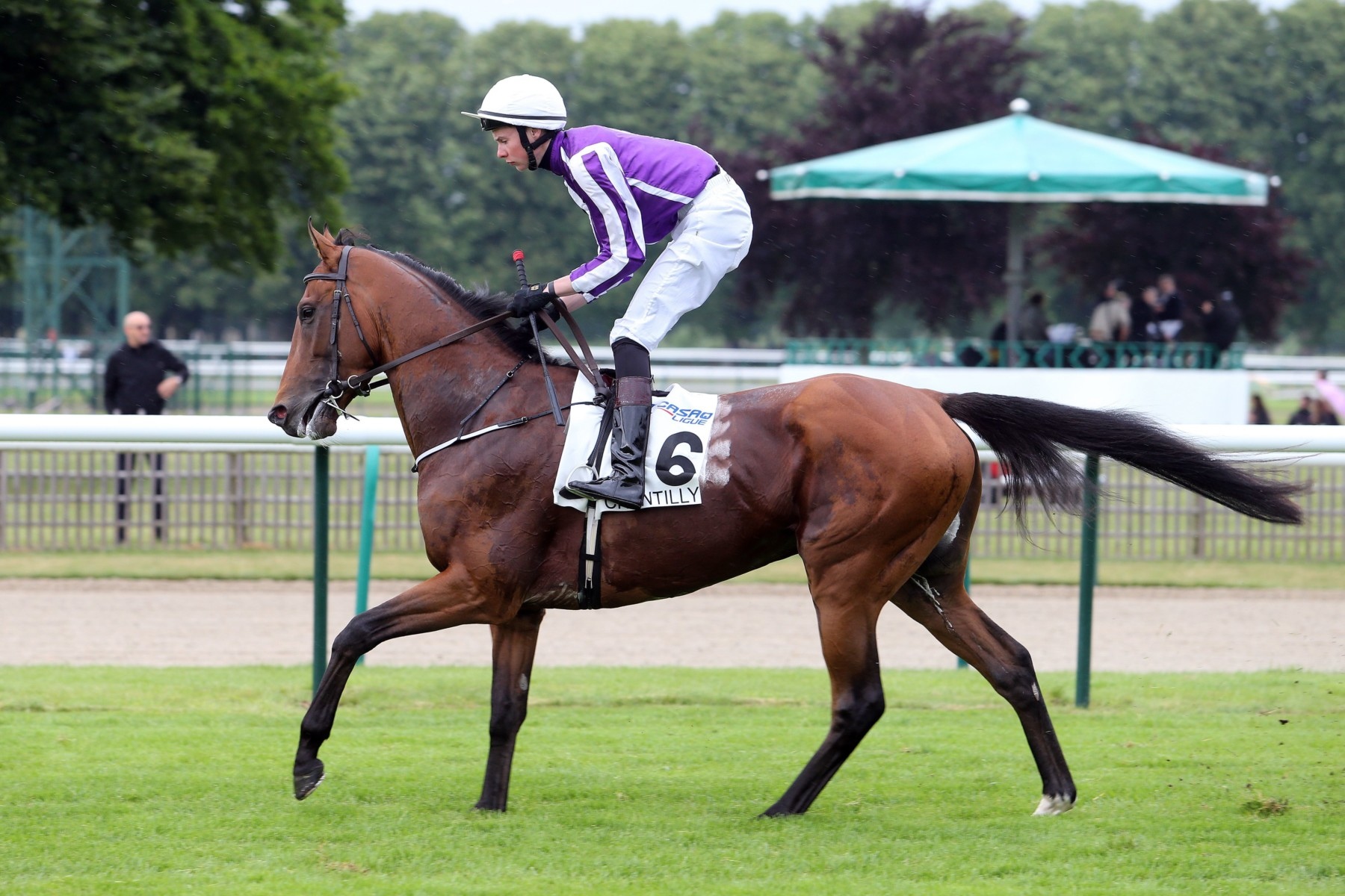 CORONATION CUP - Highland Reel, le frequent flyer