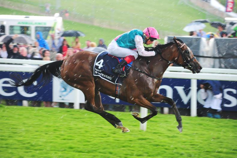 KING GEORGE VI AND QUEEN ELIZABETH STAKES (Gr1) - Enable, le poids et la classe