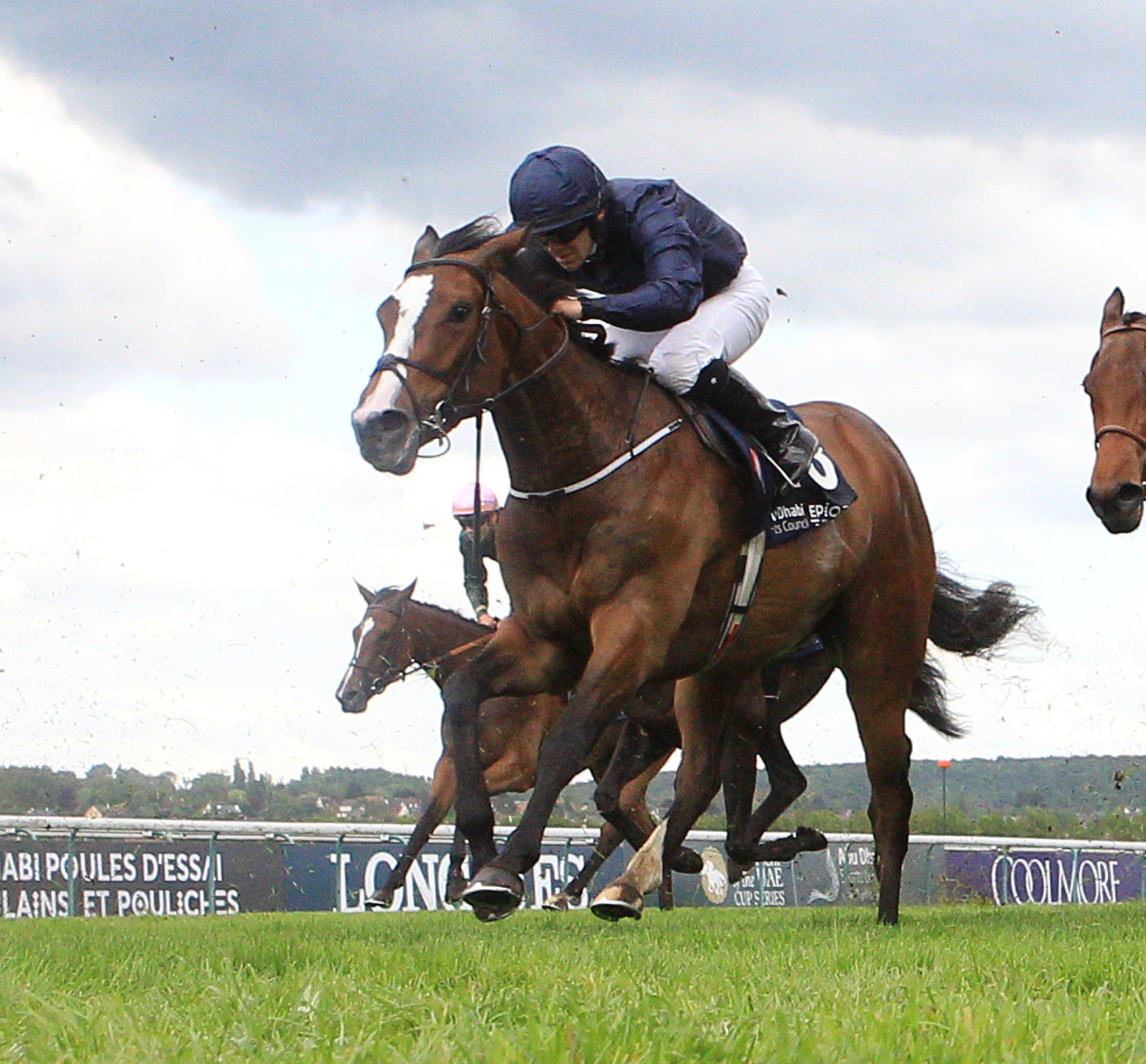 BEVERLY D STAKES (Gr1) - Rain Goddess, après Enable