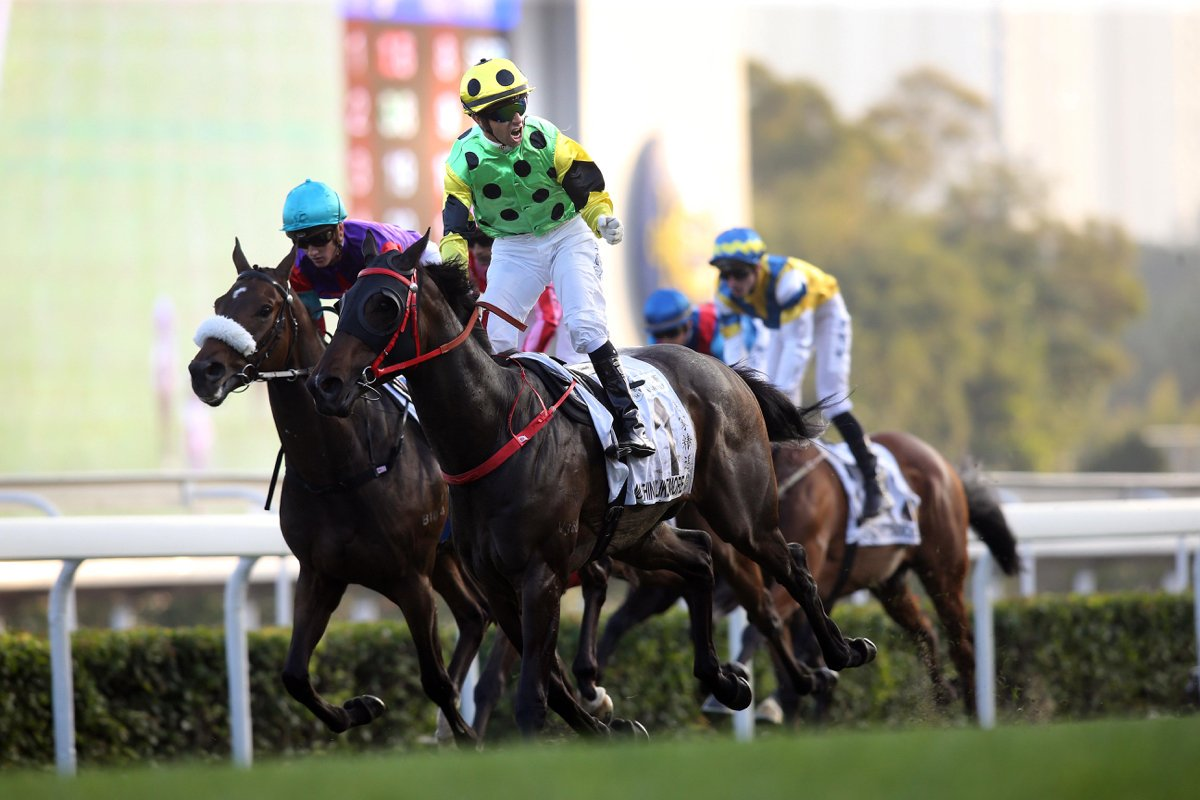 THE HONG KONG CLASSIC CUP (Gr1) - Un nouveau champion pour le Nouvel An