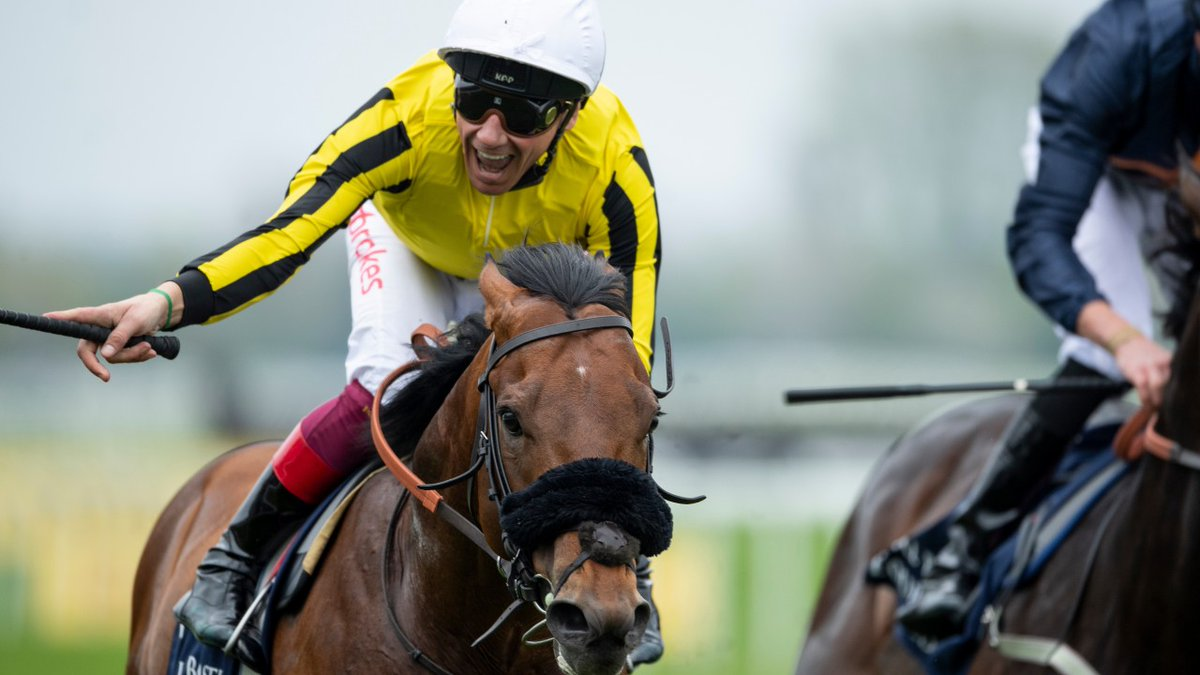 GREENHAM STAKES (GR3) - James Garfield gagne sa place à Newmarket