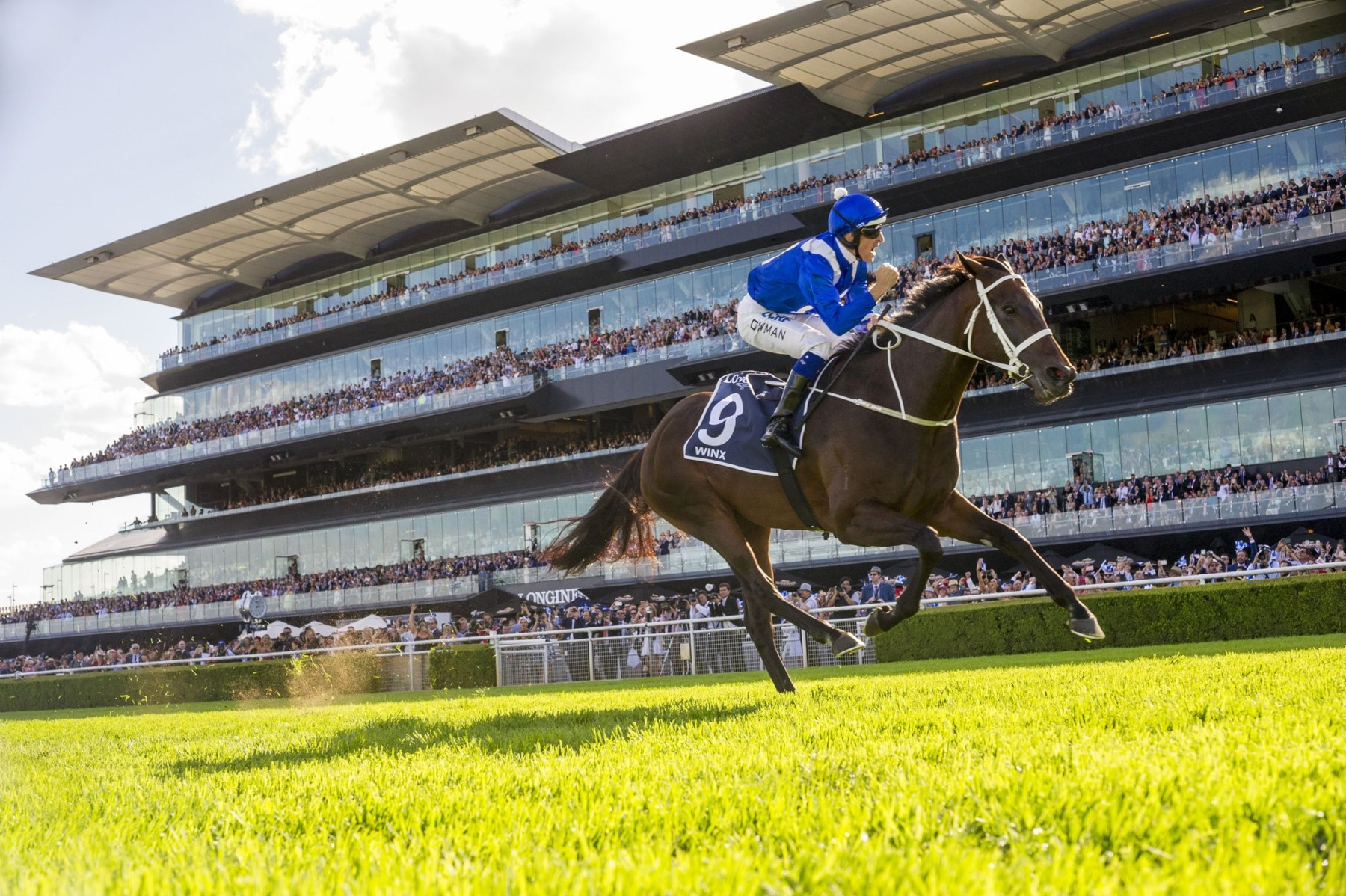 LONGINES QUEEN ELIZABETH STAKES (GR1) - Winx était imbattable
