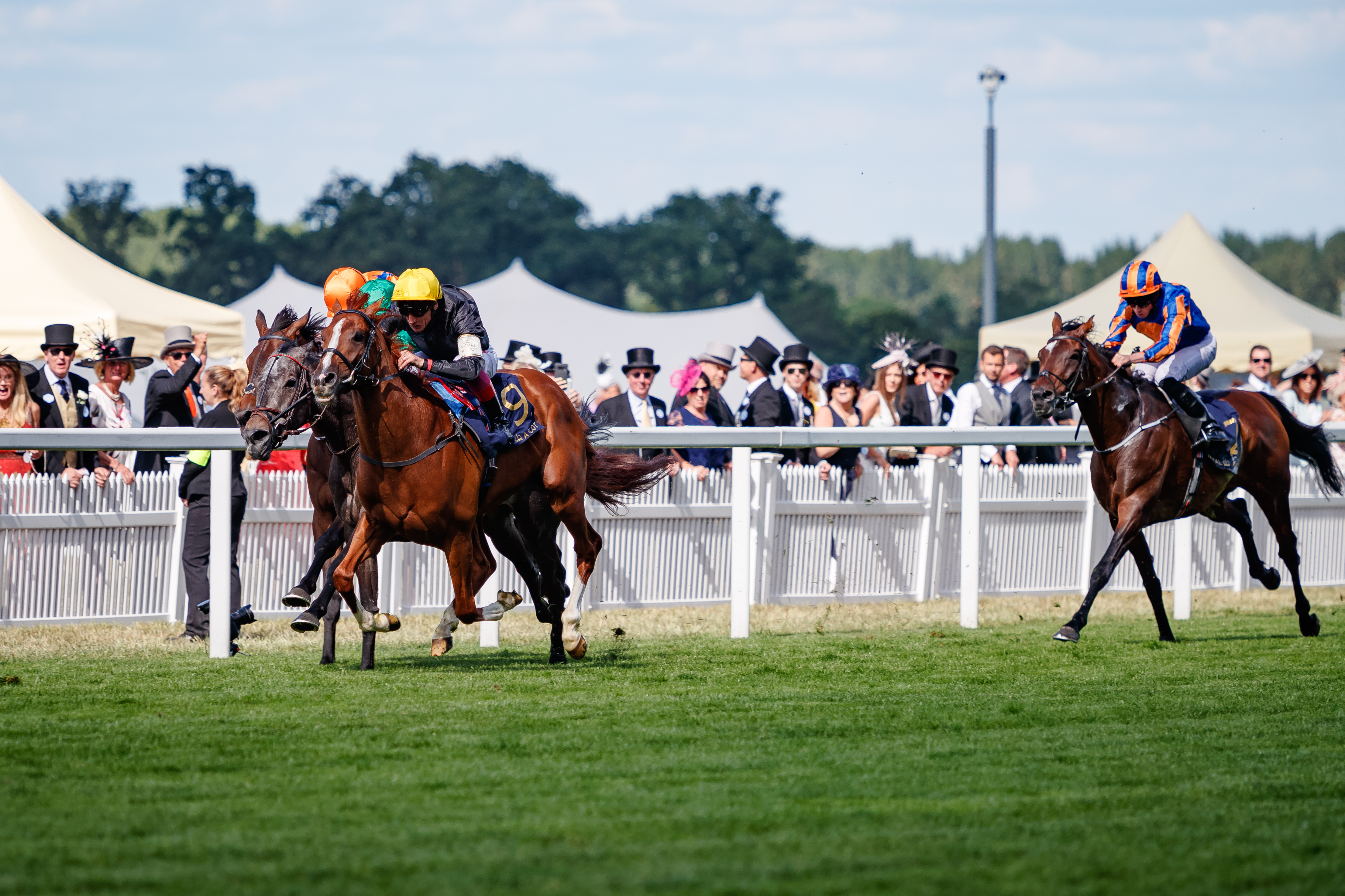 QATAR GOODWOOD CUP (GR1) - Stradivarius pour le doublé… et le million