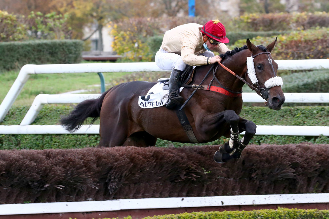 Prix Elseneur (Steeple-chase) : Magic Dream ** peut rêver