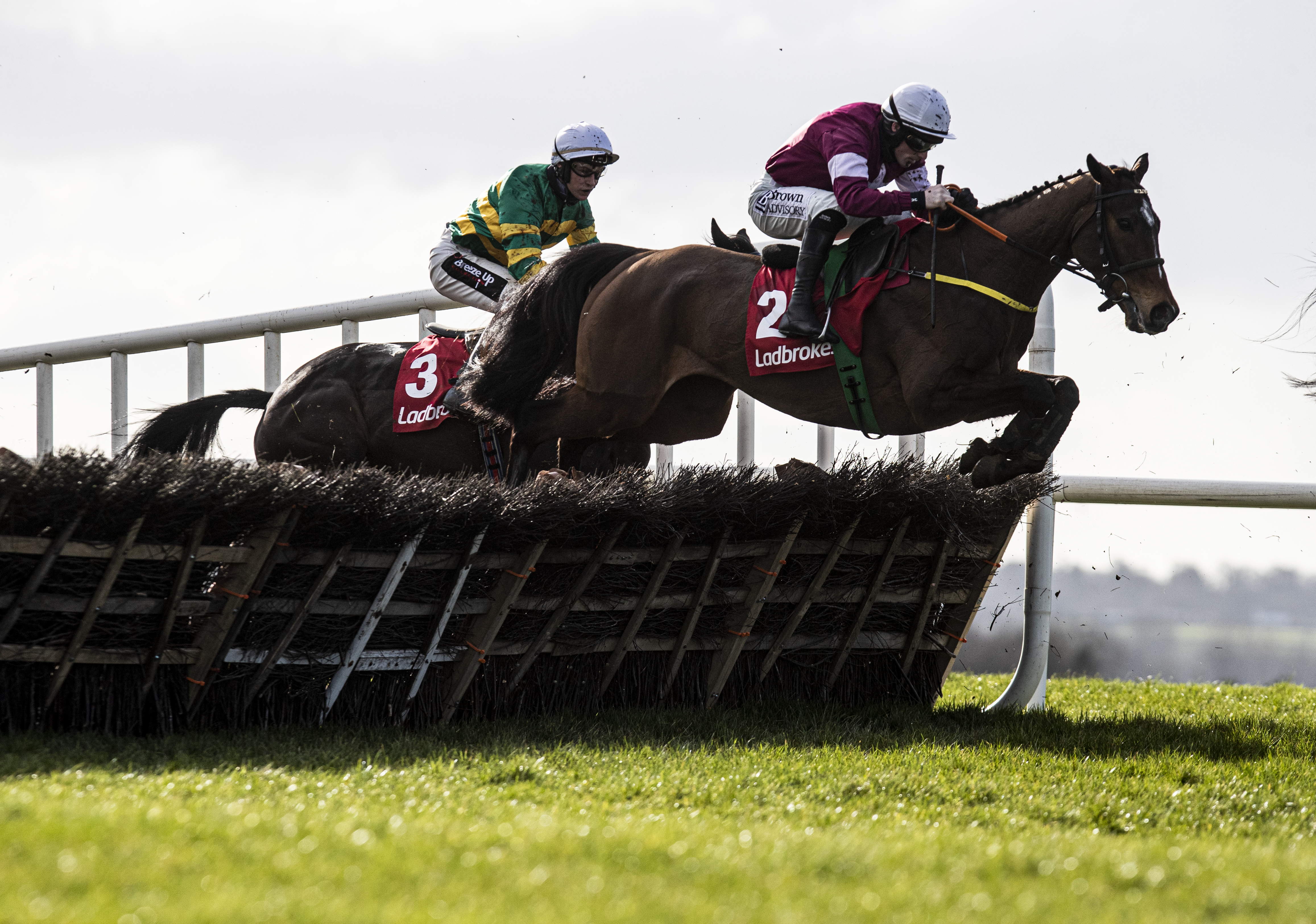 Ladbrokes Ireland Boyne Hurdle (Gr2) : Beacon Edge et Fury Road suppléent Tiger Roll