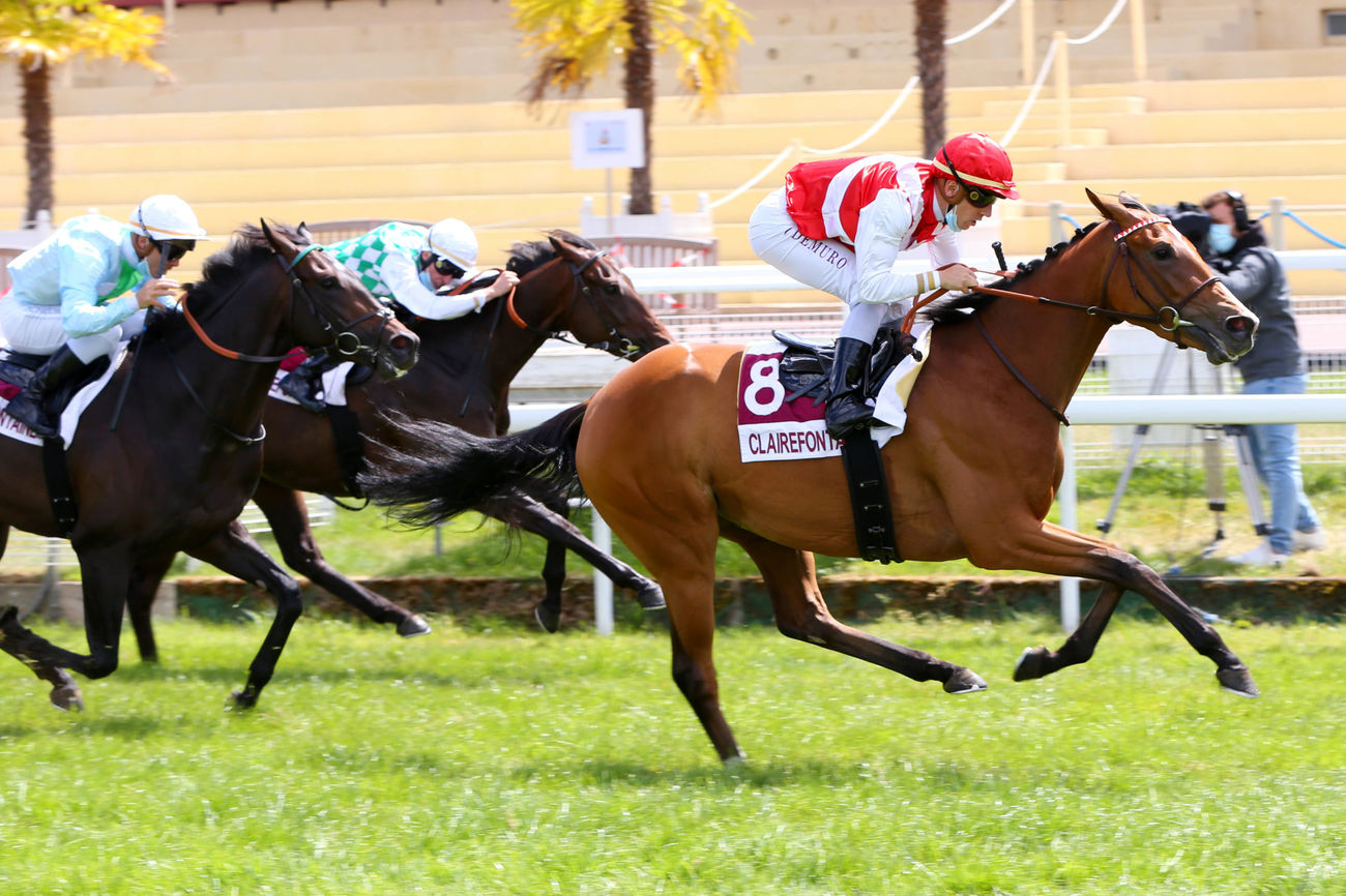 Prix de Beauséjour (Classe 1) : Black Fever, la belle surprise