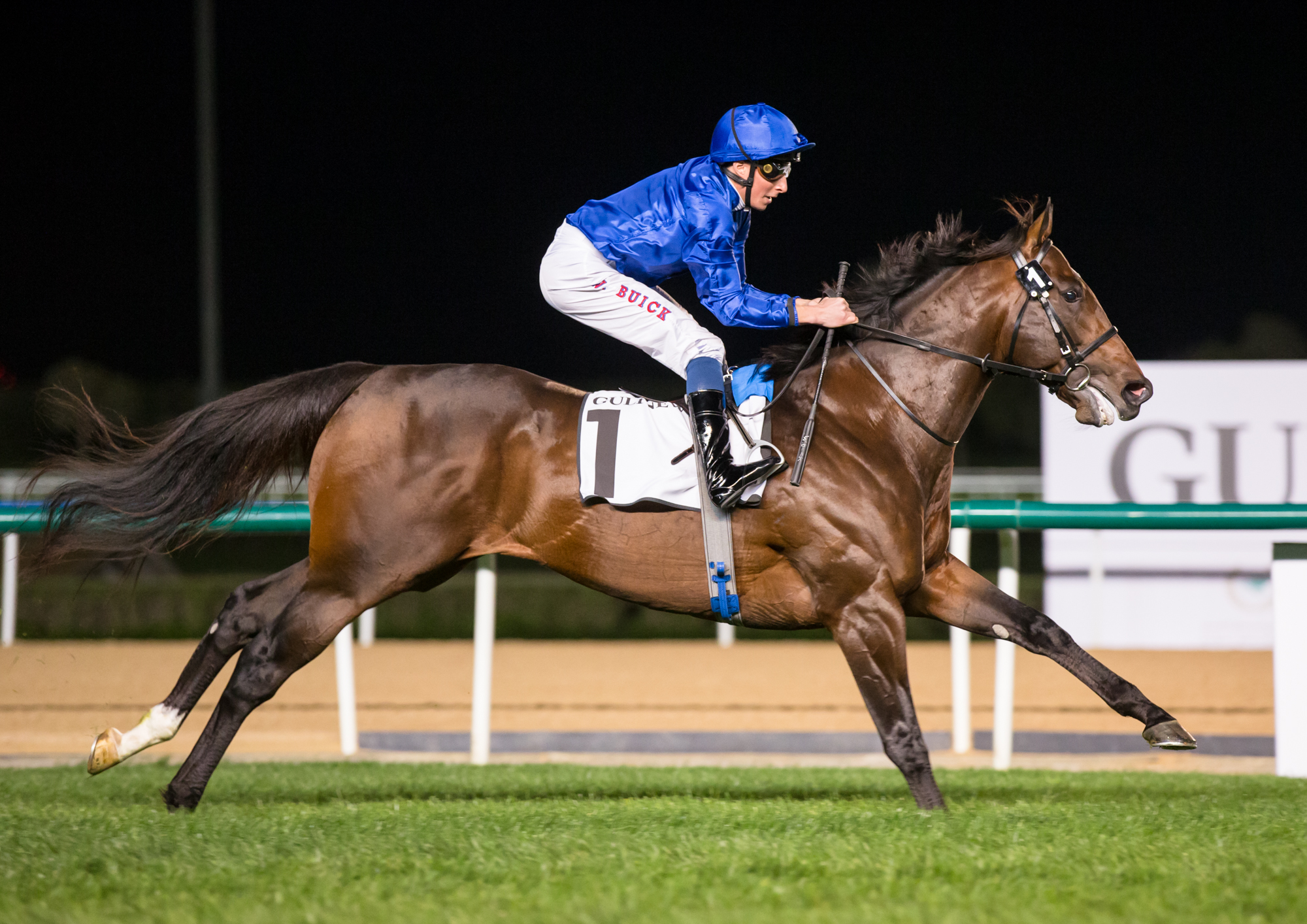 MEYDAN SPRINT (GR2) - Blue Point, un sprint en solitaire
