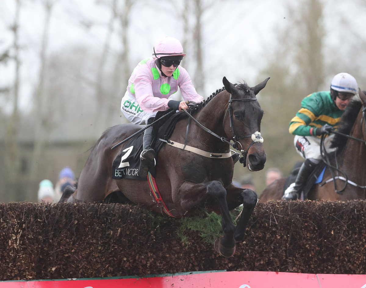 IRISH GRAND NATIONAL - Burrows Saint offre le Graal à Willie Mullins