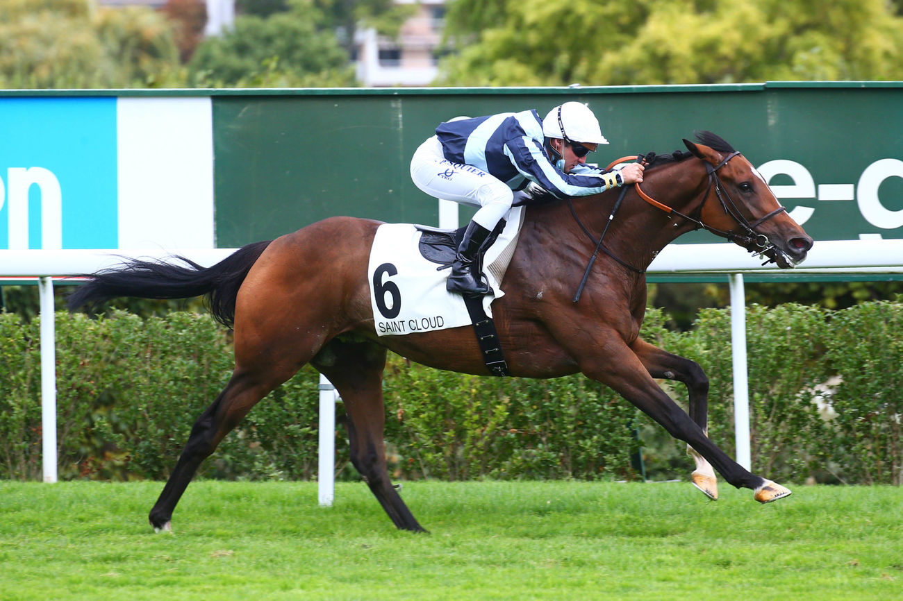 Prix Borax (Maiden) : Calculating vise juste
