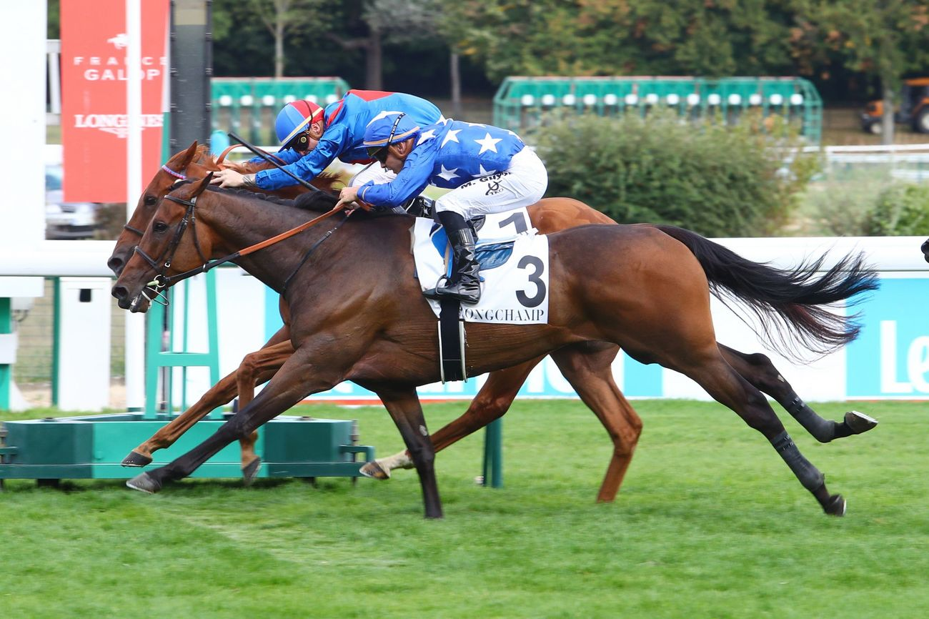 PRIX GLADIATEUR (GR3) - Called to the Bar, du courage… et un coup de pouce du destin !