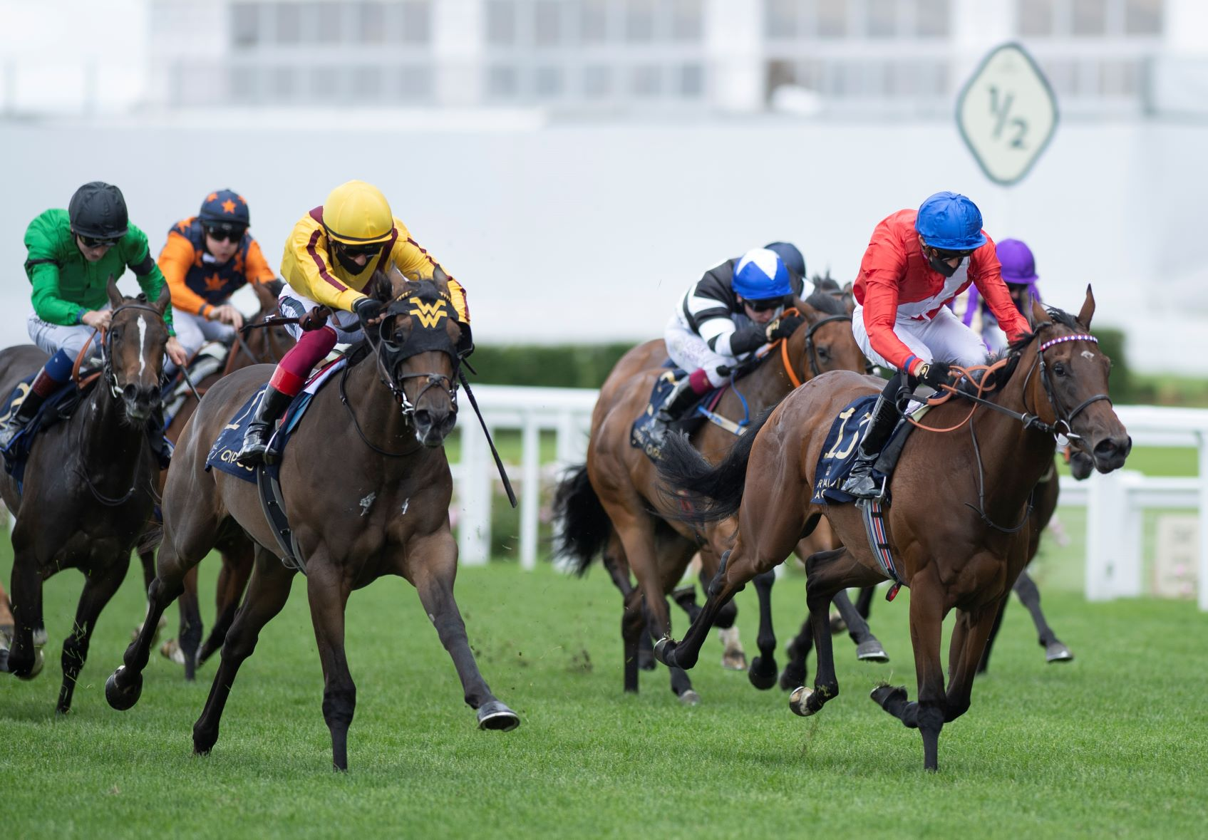 Queen Mary Stakes (Gr2) : Campanelle, une Ward pas comme les autres vers le Morny