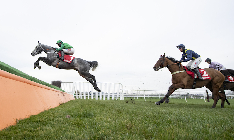 Ladbrokes Committed to Safer Gambling Novices' Chase (Gr2) : Caribean Boy profite d'un engagement en or massif