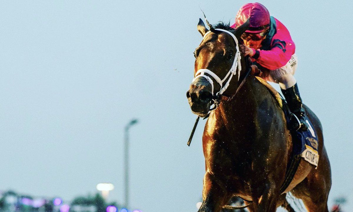 PEGASUS WORLD CUP (GR1) - City of Light s'allume, Accelerate cale