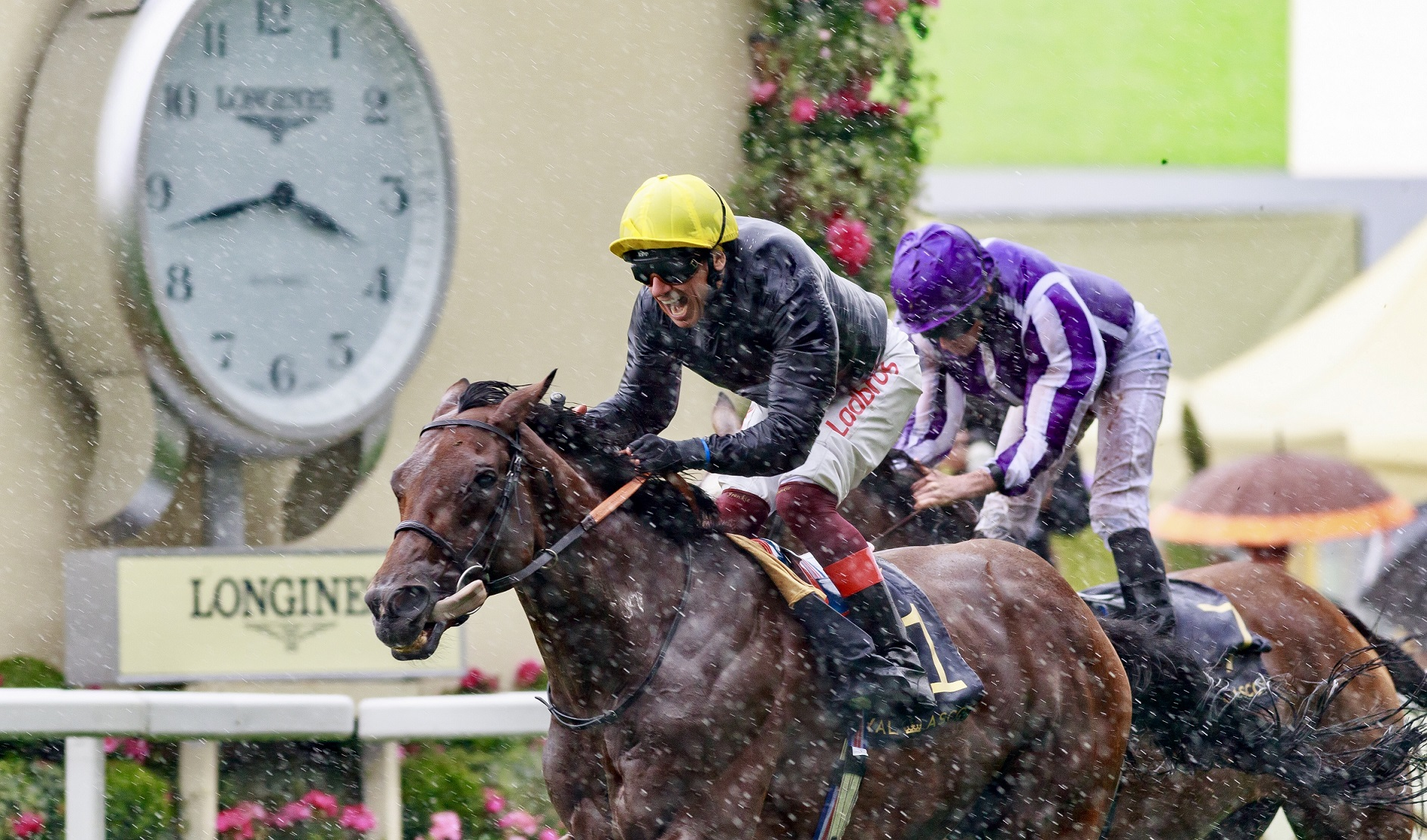 WORLD'S BEST RACEHORSE RANKINGS - Crystal Ocean au sommet, mais Enable…