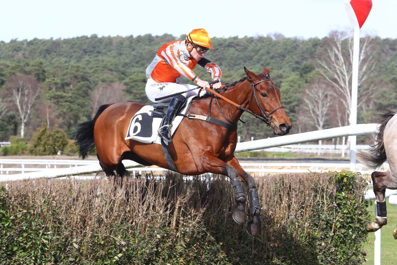 Prix Piano de la Juiverie (Cross-country) : Deauseille, du talent et une part de chance