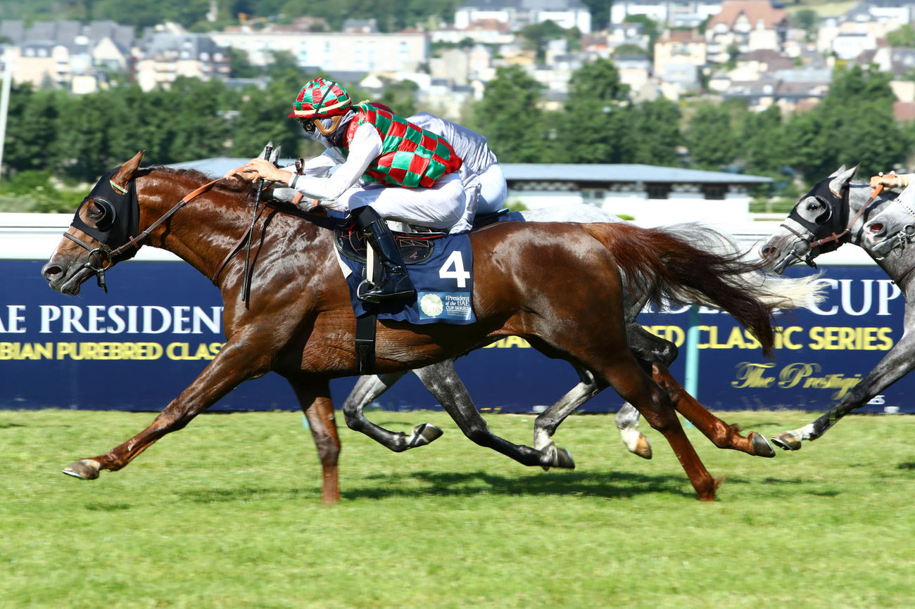 The President of the UAE Cup - Coupe d'Europe des Chevaux Arabes (Gr1 PA) : Deryan, sans forcer… mais pas sans trembler