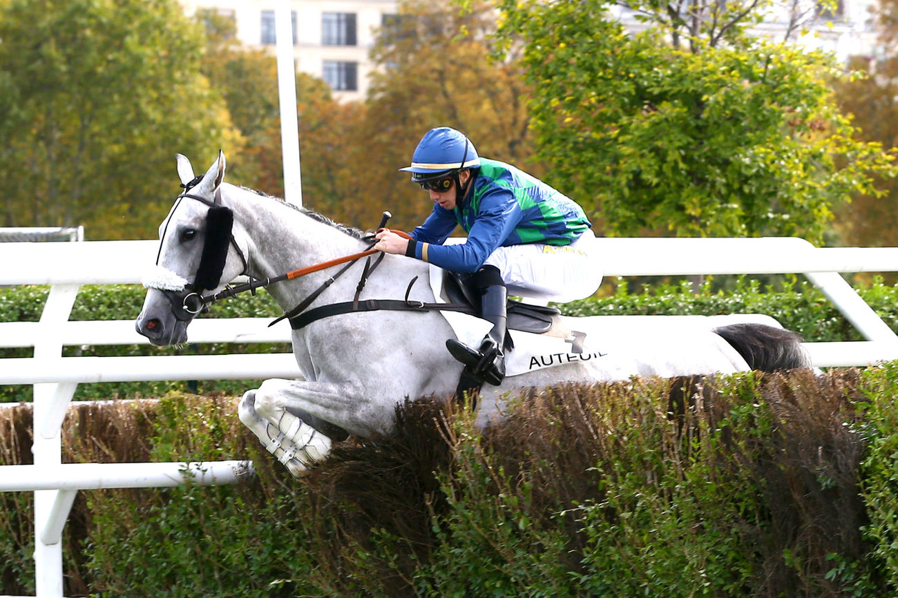 PRIX NOIRO (L) - Dream Wish en poulain dur