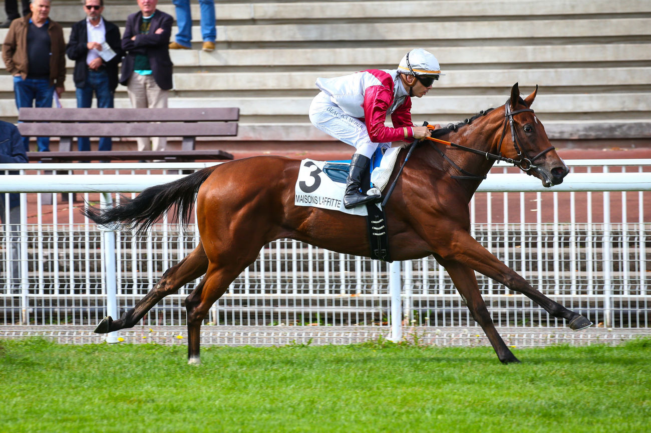 PRIX ESMERALDA (CLASSE 2) - Dream and Do ** en future grande